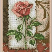Dimensions 65096 Single rose